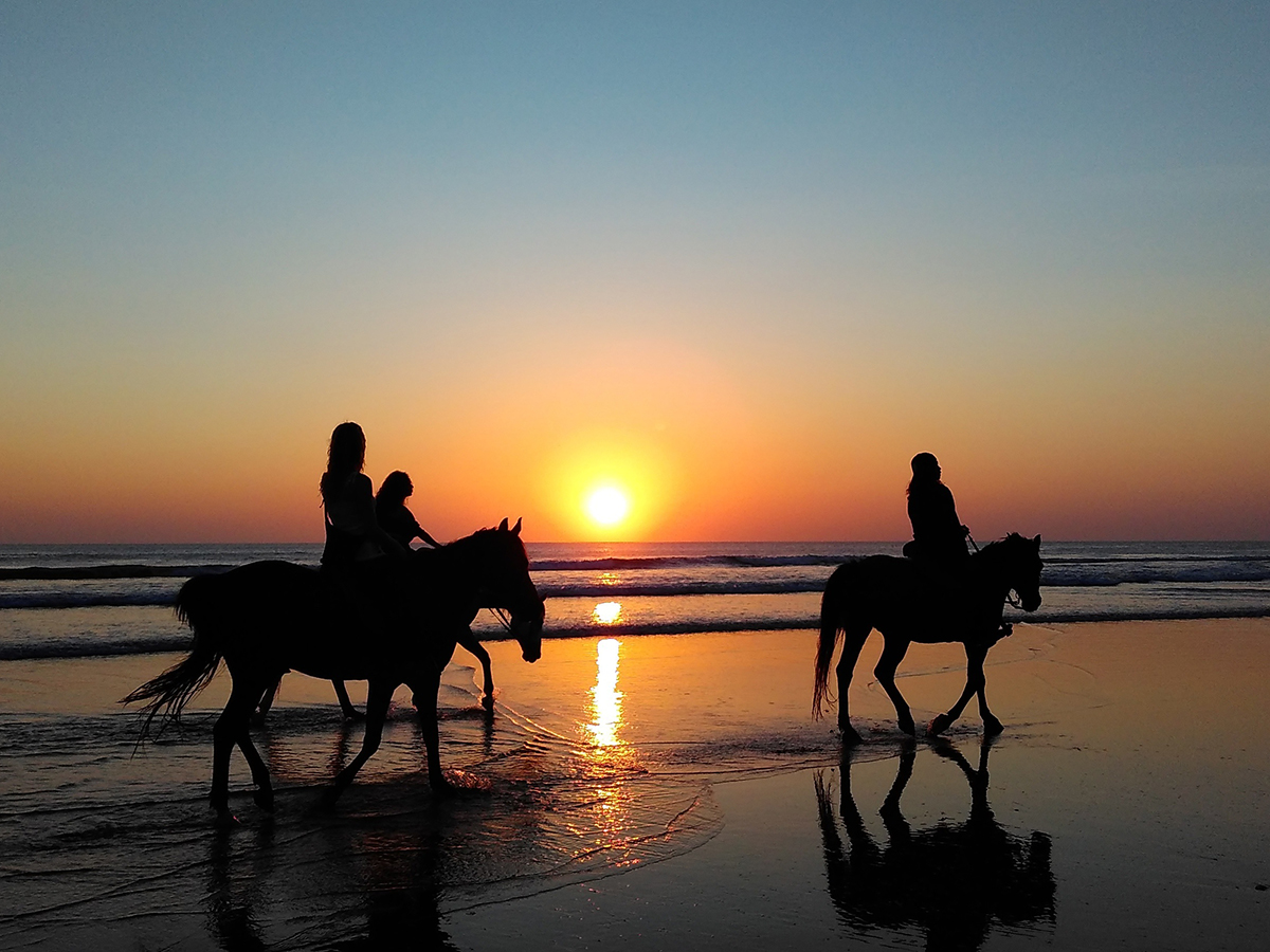 Rome horse riding tours – Rome private Horseback riding excursion just outside Rome. Escorted by expert tour guide, Al itineraries can be changed according to your needs. Horse riding we offer are also suitable for children and beginners. tour in rome - Home - Tour in Rome