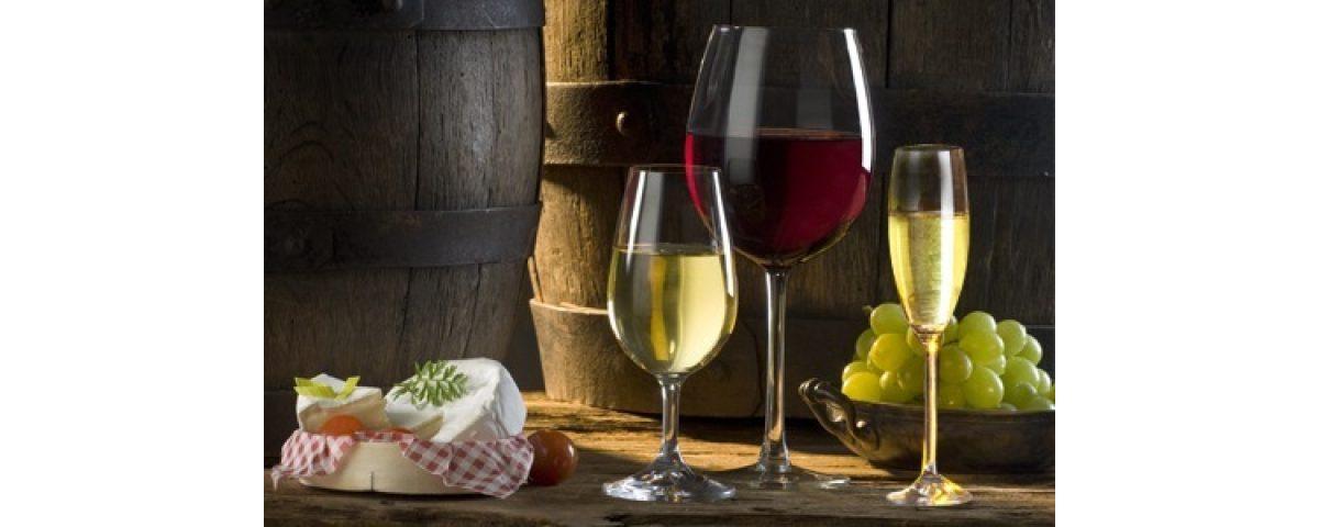 rome wine tasting tour - Degustazione di Vini 1200x480 - Rome Wine tasting Tour
