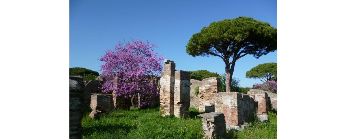tour privado por ostia antigua - Ostia antica Tour 1200x480 - Tour privado por Ostia Antigua
