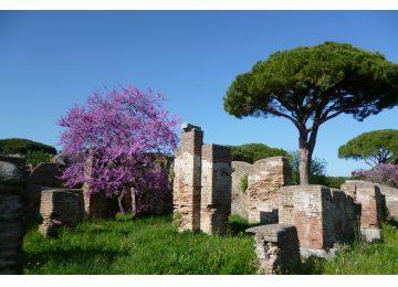 tour privado por ostia antigua - Ostia antica Tour 360x260 - Tour privado por Ostia Antigua