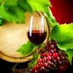 Рим Дегустация вин - Vino 150x150 - Рим Дегустация вин