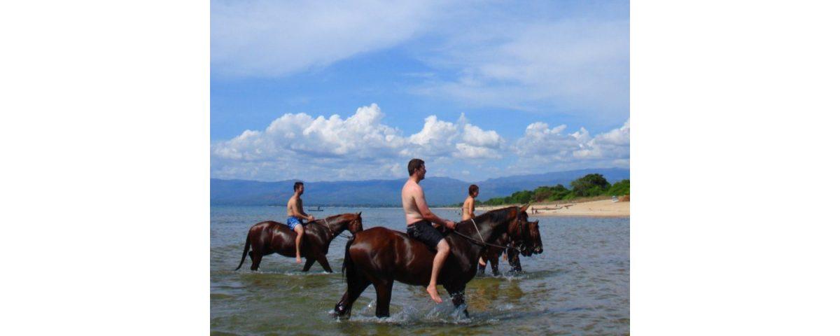 [object object] - A cavallo sul lago di Bracciano Large 1200x480 - Bracciano