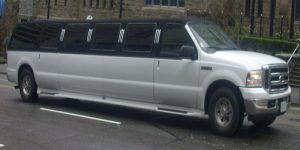 rome tours in limousine - Excursion Limousine 14 Seats 300x150 - Rome tours in Limousine