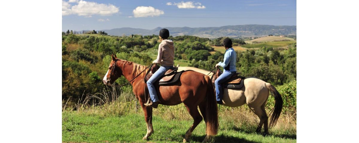 frascati wine tasting - Vino e cavalli 1200x480 - Frascati Wine Tasting and Horses Tour