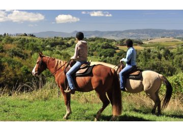 - Frascati Wine Tasting and Horses Tour