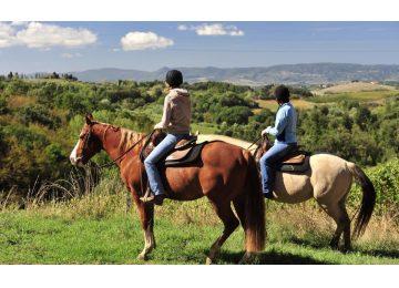vino e cavalli - Vino e cavalli 360x260 - Frascati Vino e Cavalli Tour